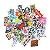 100-Stickers for Hydro Flask Waterproof,Hydro Flask Stickers,Supreme Stickers, Nike Stickers,Brand Stickers and More!