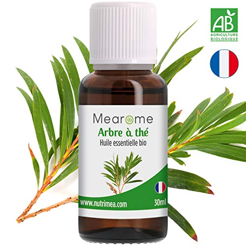 Huile essentielle d'ARBRE A THE (Tea Tree) BIO - Confort respiratoire, Diffuseur, Aromathérapie -...