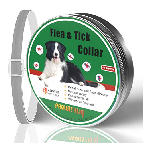 Collares de pulgas y garrapatas para Perros, prevención de pulgas y garrapatas Ajustables de 8 Meses para Perros, Collares de pulgas Naturales para Perros, Collares de garrapatas de 25'