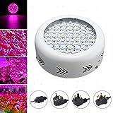 DADEQISH 210W UFO LED Crece la lámpara Interior hidropónica de la Planta de la Flor del Panel Lleno Ligero de Spectrum Luz Interior (Color : AU Plug)