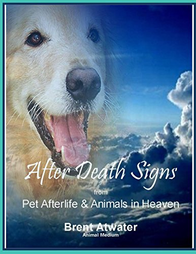 After Death Signs from Pet Afterlife and Animals in Heaven: How to Ask...