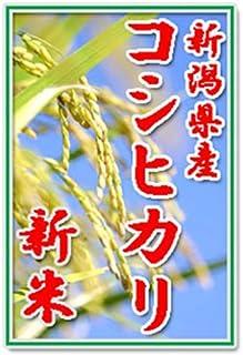 【新米2020年産】田辺さん家の有機質肥料100%・低減農薬 新潟県産コシヒカリ100%白米 10kg くっつかないしゃもじ付