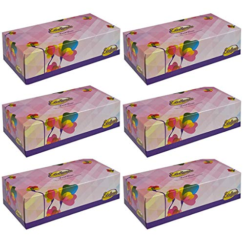Tiger Chef Facial Tissues  130 Tissues Per Box  6 Tissue Boxes  2Ply