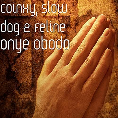 Coinxy, Slow Dog & Feline