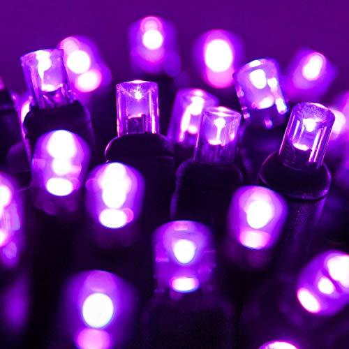 Wintergreen Lighting LED Purple Halloween Mini Light Set, 70 5mm Lights, Indoor/Outdoor Halloween Light Decorations, 120V UL Certified, Black Wire