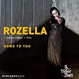 Home to You (feat. Darren Ashley, Flex) [Tiger Jams]