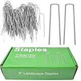 MySit 50x 6-Inch Galvanized Ground Garden Staples Stakes Pins, Lawn Landscape Staples Weed Fabric Staple, Heavy-Duty 11 Gauge Anti-Rust Steel Sod Anchor Securing Pegs(SodStaple_11Ga_AR50) …