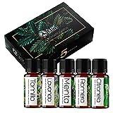 Kit Aromaterapia OLEOS – BÁSICOS - 5 Aceites Esenciales 100% Natural y puro. 10ml (Lavanda, Romero, Menta, Citronela,Tomillo)