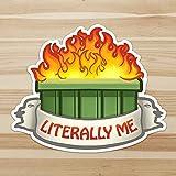 Dumpster Fire - Literally Me - Meme - Original Artwork Sticker