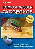 *Kompaktwissen Taggeckos: Die Gattung Phelsuma. Porträts der beliebtesten Arten. Von A wie Anschaffung bis Z wie Zucht