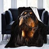 Manta ponderada Rottweiler Cute Dog Charm Quiet Flannel Fluffy Full Fleece Throw Blanket Queen King Size Edredón Felpa Suave y Acogedor Edredón Ropa de Cama de guardería Decoración Decoraciones de do