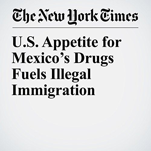 U.S. Appetite for Mexico's Drugs Fuels Illegal Immigration audiobook cover art