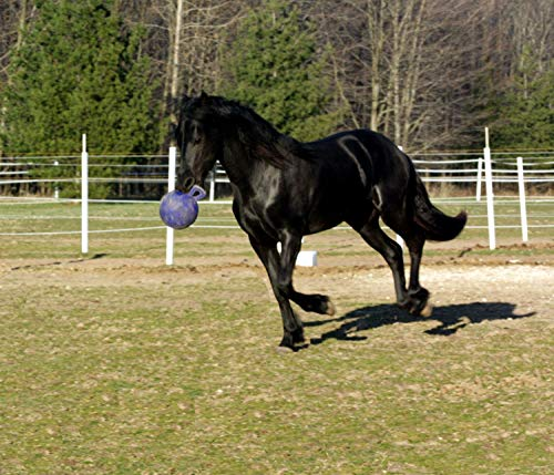 Other HORSEMEN'S PRIDE JOLLY BALL, clear, 10-inch, 410 PRP