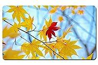 黄色の葉、唯一の赤、秋、青色の背景 パターンカスタムの マウスパッド 植物・花 デスクマット 大 (60cmx35cm)