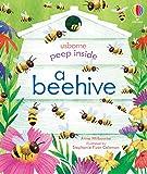 Peep Inside a Beehive