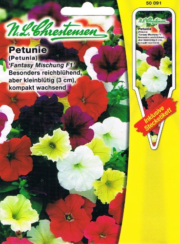 Petunia Fantasy Mix F1 - Fleurs particulièrement riches mais petites fleurs - Compacte - À croissance (avec étiquettes) - Petunia milliflora.