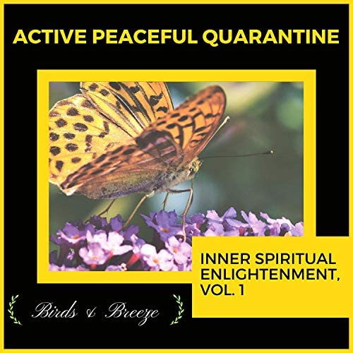 Ambient 11, Yogsutra Relaxation Co, Mystical Guide, Spiritual Sound Clubb, The Focal Pointt, Serenity Calls, Sacred Mind, Dr. Yoga, Dr. Krazy Windsor, Theta Sleepers, Cleanse & Heal, Dr. Bendict Nervo, Zen Town, Relax & Rejoice, Jack Tindall, Placid Winds, RauDrAE & COSMK