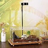 lossomly Caja de Reptiles Transparente Acrílico Tanques de cría de Reptiles Terrario para Rana Serpiente Lagarto - 15X20X30cm Carefully