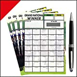 Horse Racing Grand National Fundraising/Charity Scratch Card (40 Horses) - 10 Pack