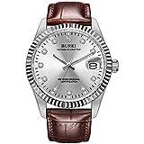 Best BUREI Automatic Watches - BUREI Men's Business Automatic Watch Silver Dial Calendar Review