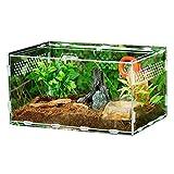 windyday Terrarium Transportbox 30 x 20 x 15 cm Glasterrarium Belüftung Reptielien Terrarium Zubehör Transparente Reptilienzuchtbox Acryl Schieberzucht Box