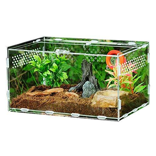 circulor Terrarium Transportbox, Terrarium Zubehör Transparente Reptilienzuchtbox, Baumkiste 360 Grad Hoch Transparentes Rundloch - Aktualisierte Version