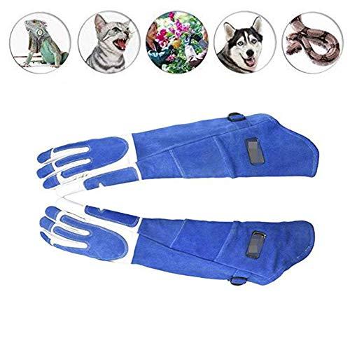 JOEPET Animal Handling Anti-bite/scratch Handschoenen voor Hond Kat Vogelslang Papegaai Hagedis Wilde Dieren Bescherming Handschoenen, Feed Handschoenen, Blauw