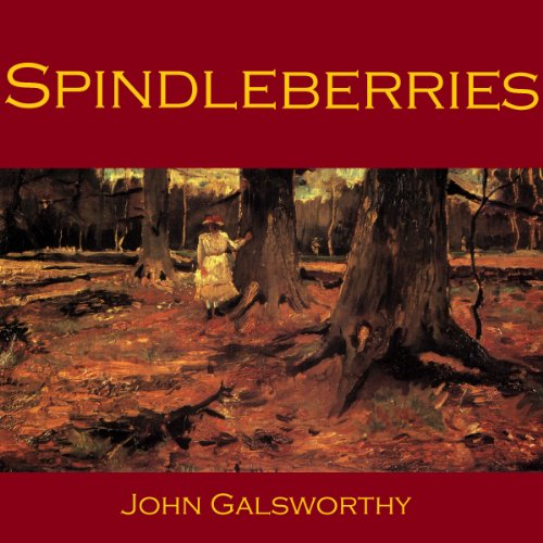 Spindleberries audiobook cover art