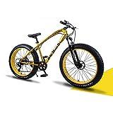 YCHBOS 26' Bicicletas de Montaña Fat Tire, Bicicleta de Nieve Beach Adulto, Cruiser Bike, Fat Bike Super Wide Neumáticos Hombres y Mujeres, Doble Freno de Disco, 24 VelocidadB