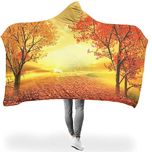 AbnoeruNVsb Painting Thermal Hooded Blanket All Season Square Blankets for Living Room in Spring or Autumn or Winter Gorgeous Style White 60x80 inch