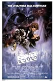 Grupo Erik - Póster Star Wars El Imperio contra Ataca, 61x91,5 cm