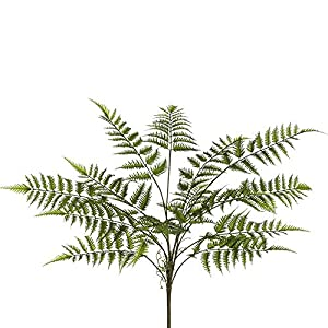 SilksAreForever 29″ Artificial Forest Fern Leaf Plant -Green (Pack of 6)