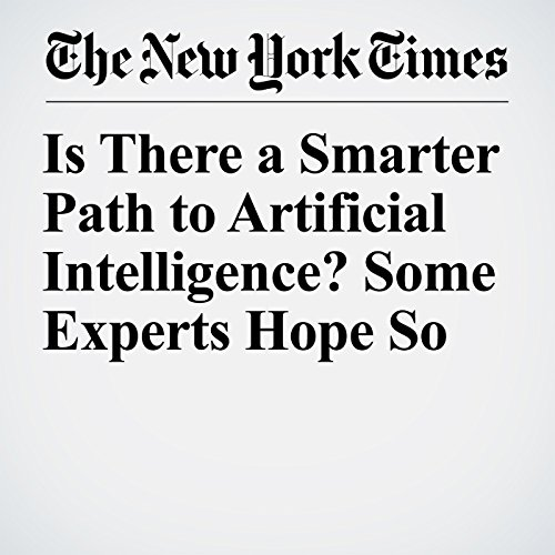 Is There a Smarter Path to Artificial Intelligence? Some Experts Hope So audiobook cover art