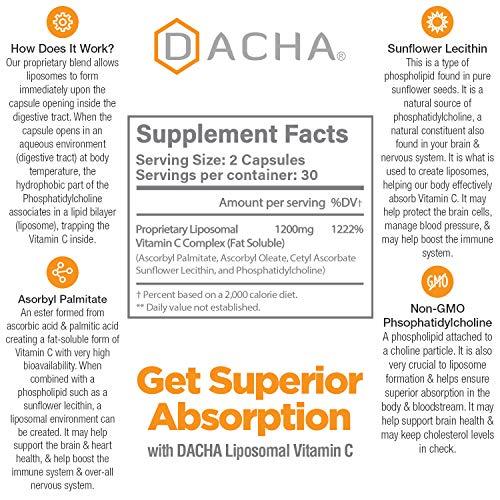 51iu+ldzVfL - DACHA Nutrition Natural Liposomal Vitamin C - Immune System & Collagen Booster, High Absorption Fat Soluble VIT C, Buffered 1200mg, Anti Aging Skin Vitamins, Anti Inflammatory, Sunflower Lecithin