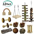 ERKOON 12 Pack Hamster Chew Toys Gerbil Rat Guinea Pig Chinchilla Chew Toys Accessories, Natural Wooden Dumbbells Exercise Bell Roller Teeth Care Molar Toy for Rabbits Bird Rabbits Hamster Gerbil from ERKOON