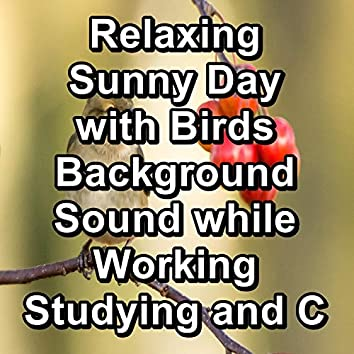 Relaxing Sunny Day with Birds Background Sound while Working Studying and Concentration