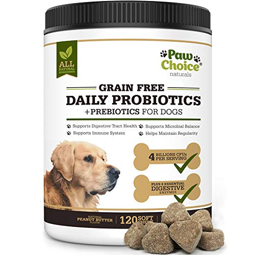 Paw Choice Grain Free Probiotics for Dogs with Prebiotics  Digestive Enzymes - 120 All Natural Chews for Healthy Gut  Digestion  Immune System  Diarrhea Relief - Made in USA - Peanut Butter Flavor