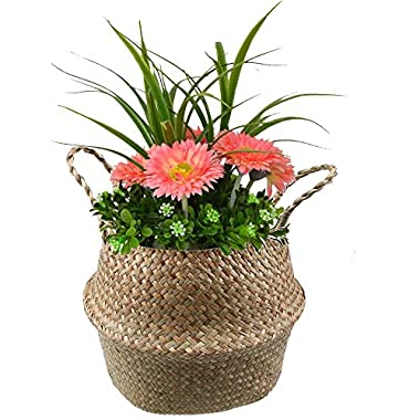 WCIC Belly Basket Seagrass Storage Bin, Natural Woven Planter Hanging Basket With Handle Flower Pot Vase 9.64 x11.02