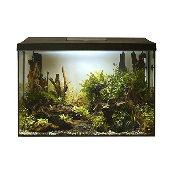 AQUAEL Leddy XL Day & Night 60 L Komplett Aquarium mit LED-Licht