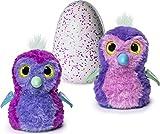 Hatchimals Glittering Garden - Hatching Egg and Interactive Sparkly...