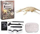 Dinosaurier Fossil Ausgrabung Archäologisches Spielzeug Set, Dino Fossil Ausgrabungsset, Kinderspielzeug für die frühe Entwicklung für Jungen Mädchen, Wissenschaftsspielzeug für 6+ Kinder (Plesiosaur)