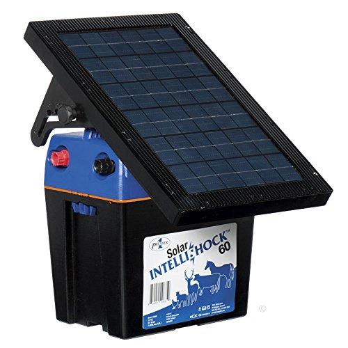 Premium Solar IntelliShock