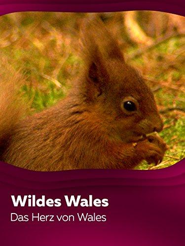 Wildes Wales - Das Herz von Wales