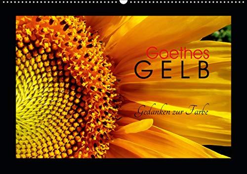 Goethes Gelb Gedanken zur Farbe (Wandkalender 2021 DIN A2 quer)