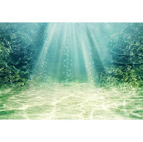 Cassisy 1,5x1m Vinilo Submarino Telon de Fondo Paisaje del océano Sunbeam Seaweed Parte Inferior de Arena Rocas Fondos para Fotografia Party Infantil Photo Studio Props Photo Booth