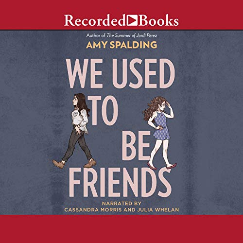 We Used to Be Friends audiobook cover art