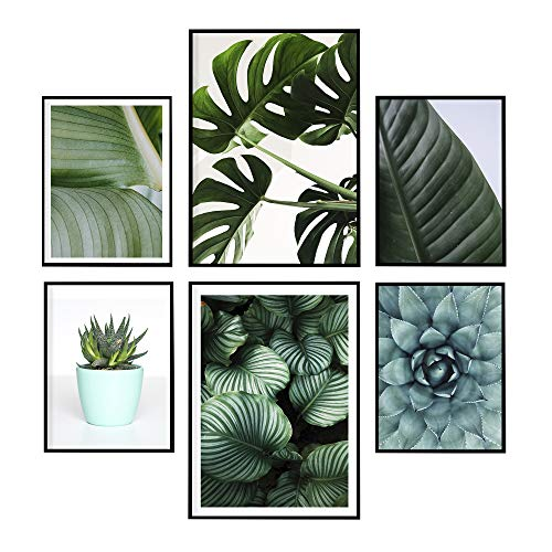 LAMINAHOME Set de laminas decorativas para enmarcar. Cuadros Decorativos Grandes 30x40 cm y A4 (21x29,7cm). Posters decoración hogar moderno, nórdico, moda, naturaleza (Plantas)