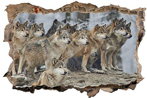 Wolf Wolfsrudel Natur Tier Wandtattoo Wandsticker Wandaufkleber D0637 Größe 40 cm x 60 cm