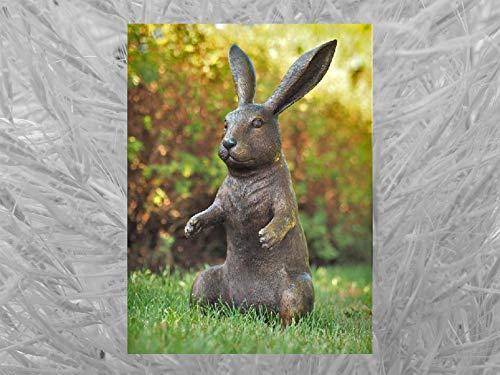 IDYL Escultura de bronce de conejo   53 x 27 x 22 cm   Figura de animal de bronce hecha a mano   Escultura de jardín o estanque   Artesanía de alta calidad   Resistente a la intemperie