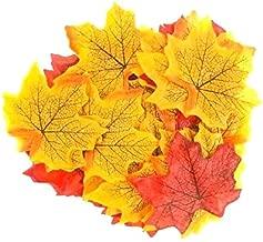Best a parchment of leaves Reviews
